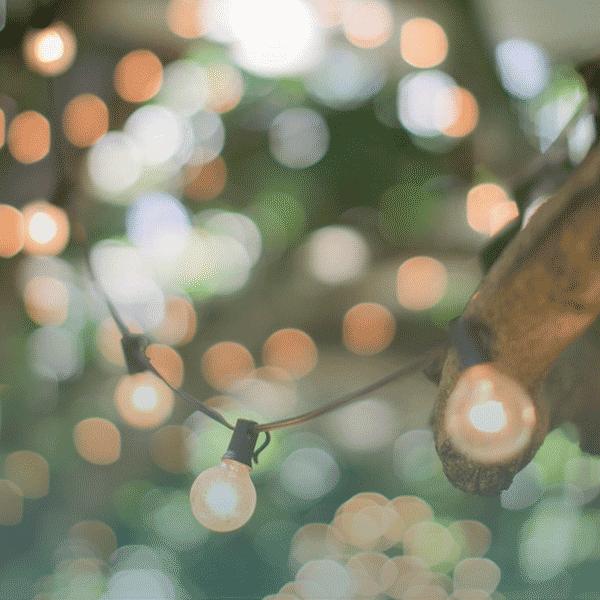 Bienfaits-contenu-green-600×600-blog-content-marketing-almaka